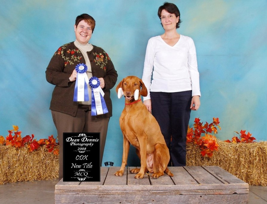 "Titre ""Companion dog by excellence"""