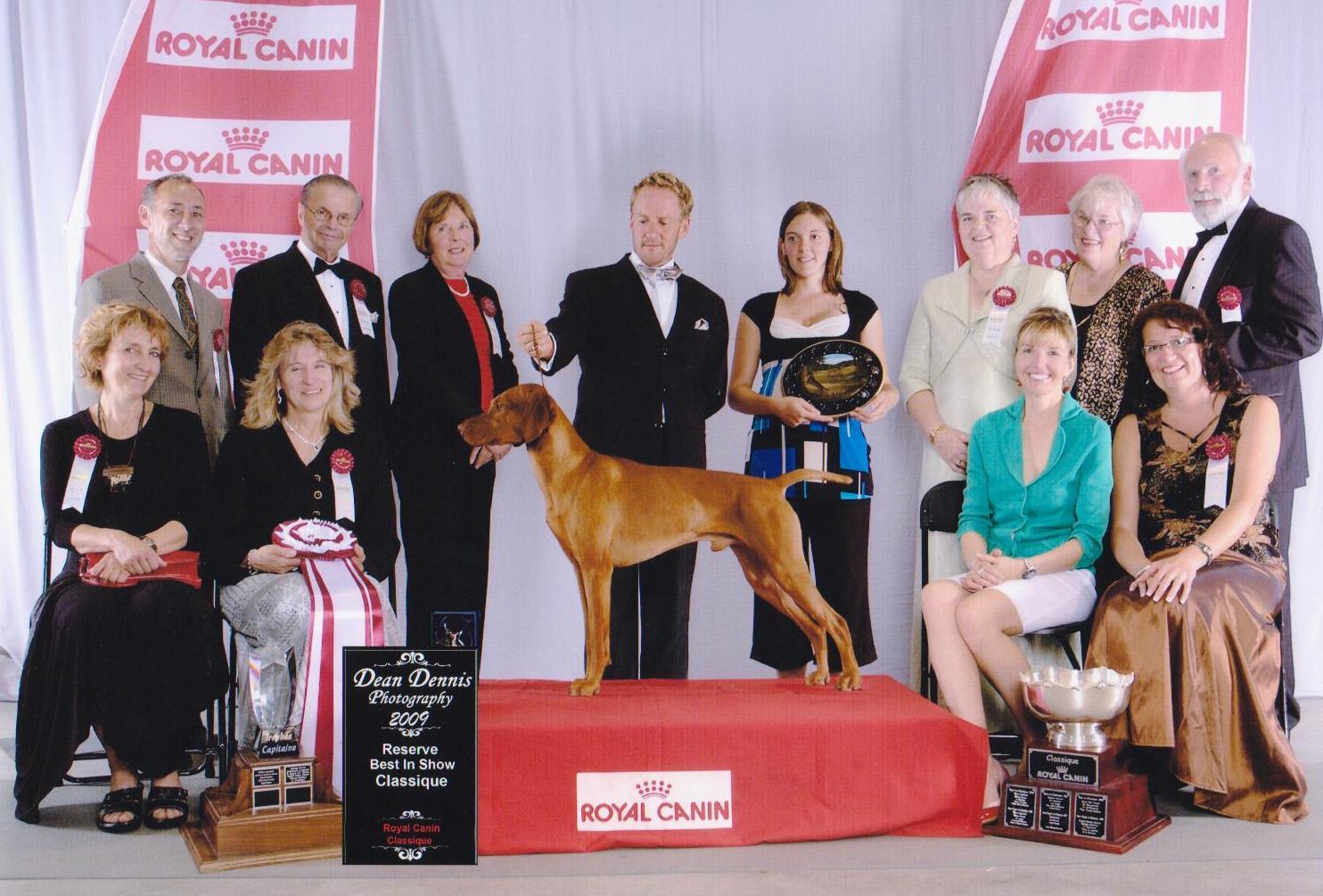 Classique Royal Canin